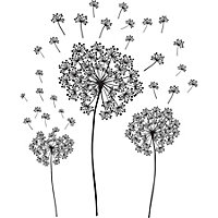 Wallpops Dandelions Black Self adhesive Wall sticker (H)610mm (W)430mm