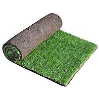 Lawn turf, 0.84m²