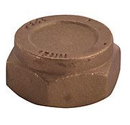 Plumbsure Compression Blanking cap nut (Dia)22mm