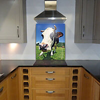 Off The Wall Creations Funky Cow Multicolour Glass Splashback, (H)745mm (W)595mm (T)6mm