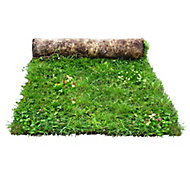Meadowmat Wildflower turf, 20m² Pack