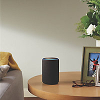 Amazon Echo Voice assistant Charcoal