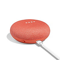 Google Home Mini Coral