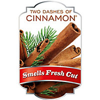 ScentSicles Cinnamon Decoration, Pack of 6