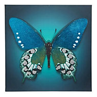 Butterfly Blue Canvas art (H)750mm (W)750mm