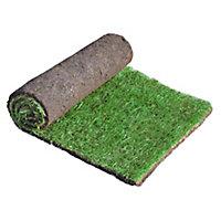Lawn turf, 42m² Pack
