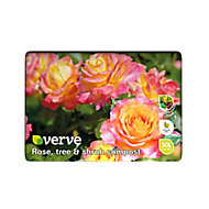 Verve Rose, shrub & tree Compost