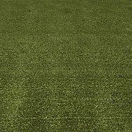 Boronia Artificial grass Sample (T)80mm
