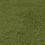 Dennis Artificial grass (W)1 m x (L)4m x (T)22mm