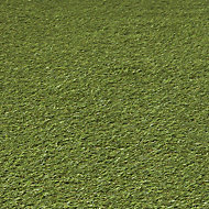 Dennis Artificial grass 8m² (T)22mm