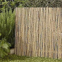 Bamboo Garden screen (H)1.5m (W)3m