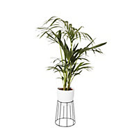 White Ceramic Plant pot (Dia)21.5cm