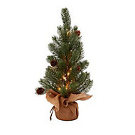 1ft Pine cone pre-lit Table top tree