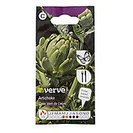 Gros Vert de Laon artichoke Seed