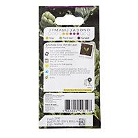 Verve Gros Vert de Laon artichoke Seed