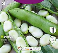 Verve Borad bean sutton Seed