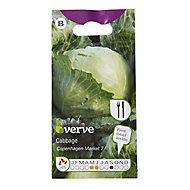Cabbage Copenhagen Market 2 Seed