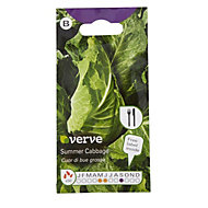 Verve Summer cabbage Seed