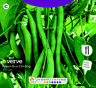 Verve Blue lake french bean Seed