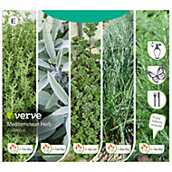 Verve Mediterranean herb collection Seed