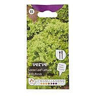 Verve Lollo Bionda lettuce Seed