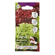 Verve Salad Bowl Lettuce Seed tape