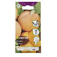 Verve Bambino pumpkin Seed