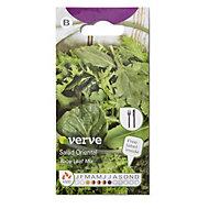 Verve Salad oriental baby leaf mix Seed