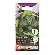 Stir fry baby leaf mix Seed