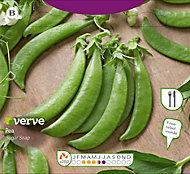 Verve Sugar snap pea Seed