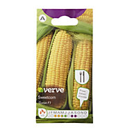 Verve Gucio F1 Sweetcorn Seed