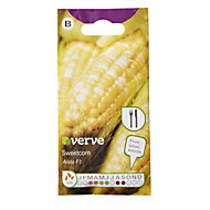 Verve Alida F1 sweetcorn Seed