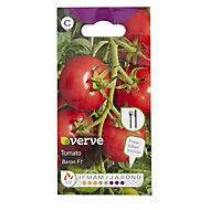 Verve Tomato Baron F1 Seed