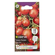 Tiny Tim Cherry Tomato Seed