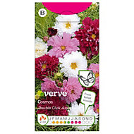 Verve Double Click cosmos Seed