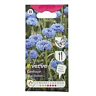 Blue Diadem Cornflower Seed