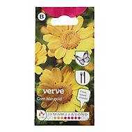 Verve Corn marigold Seed