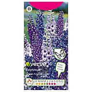Magic Fountains Delphinium Seed