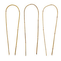 Verve Bamboo Hoop Plant support 60cm, Pack of 3