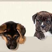 GoodHome Lanata Multicolour Puppy Smooth Border
