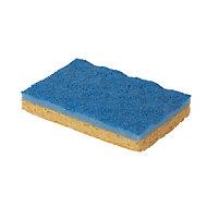 Sponge scourer, Pack of 10