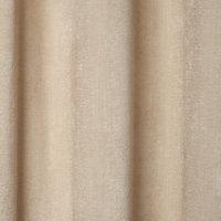 Pahea Beige Chenille Unlined Eyelet Curtain (W)117cm (L)137cm, Single