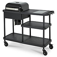 Rockwell 220 Black Charcoal Barbecue