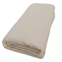 Diall Medium Reusable Dust sheet, (L)3.67m (W)2.74m