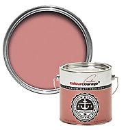 colourcourage Sucia rosa Matt Emulsion paint, 2.5L