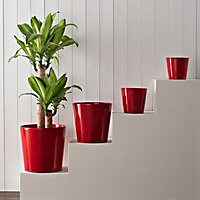 Glazed Red Ceramic Plant pot (Dia)24cm