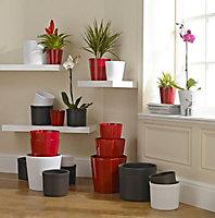 Dark grey Ceramic Straight edge Plant pot (Dia)36cm