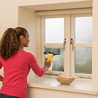 Karcher WV1 Window vac