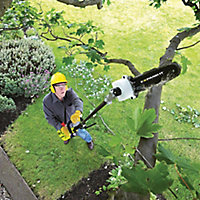 Ryobi Expand-It Pruner attachment