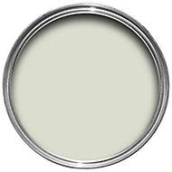 Dulux Natural hints Apple white Silk Emulsion paint 5L